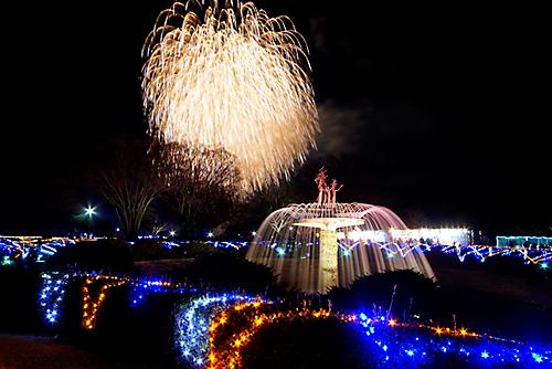 昭和記念公園のイルミネーション 花火