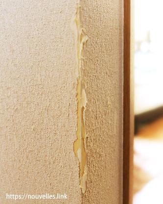 猫に爪とぎされた壁
