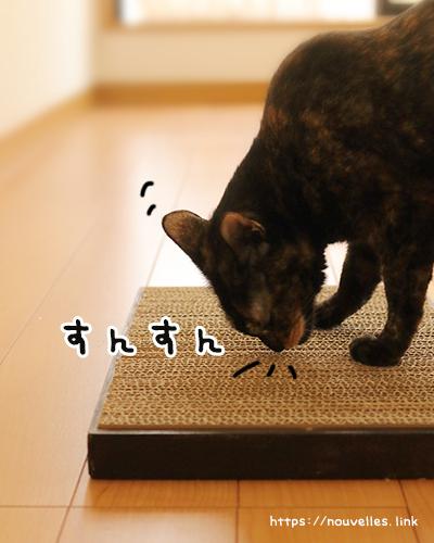 猫の爪とぎ段ボールで手作り